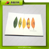 Livre de Promotinal de jardin de Shuimutsingva Vally