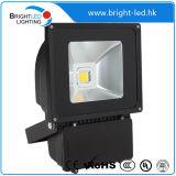 높은 루멘 Brigelux IP65 LED 투광램프 제조자