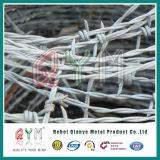 ロールごとの高品質によって電流を通されるアコーディオン式の有刺鉄線の/Razorの有刺鉄線の価格
