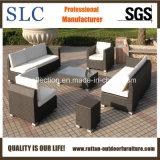 Il sofà del rattan ha impostato/disegni stabiliti del sofà 2013/di esterno stabilito del sofà (SC-B6018-B)