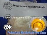 Testosteron Phenylpropionate