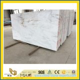 Castro White Marble Building Decorative Material per Construction Floor/Wall