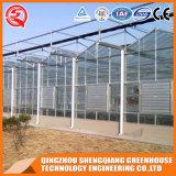 Het commerciële Groene Huis van het Gehard glas van de Tuin van de multi-Spanwijdte