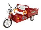Carga Tricycle&Motorcycle elétrico da alta qualidade do fabricante de China