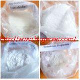 Nandrolone esteroide de calidad superior Phenylpropionate de Anabic