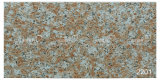 세라믹 Natural Granite Exterior Wall Tile (200X400mm)