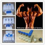Hormona humana do esteróide do crescimento do Gh Somatotropin do edifício do músculo do Peptide