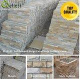 Azulejo de la pizarra/piedra de la cultura/piedra natural de la repisa/paso de progresión del azulejo que captura para la selección del material de construcción