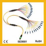 24 cabos de correção de programa Multi-Mode da fibra óptica dos núcleos Om3 MTP/MPO