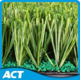 Hierba del fútbol, hierba del balompié, hierba artificial para el balompié (SE55)