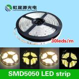 12V, 24V tira de la calidad SMD5050 LED de dc los 30LEDs/M con IEC/En62471