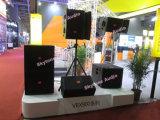 Madeira compensada do vidoeiro 12 polegadas - linha audio caixa da classe elevada do altofalante do DJ