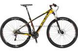 상한 29er 인치 탄소 섬유 프레임 산악 자전거 M780