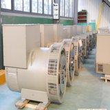 Tfw Ghsの二重ベアリング同期ブラシレス交流発電機100kVAのダイナモの発電機120V/240V