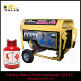 세륨 Approved 5kw Gas Power Home Generator (ZH6500NGCT)