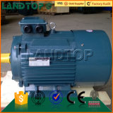 Motore elettrico a tre fasi ie2 di CA di LANDTOP