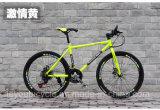 Fiets de van uitstekende kwaliteit van de Berg van de Fiets Bike/MTB van de Weg