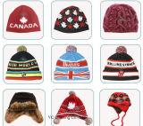Chapeau tricoté de chapeau de Beanie de femmes offert par échantillon
