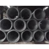 Штанга деформированная высоким качеством стальная для строительного материала (Rebar10mm)