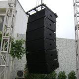 """De """" PRO AudioSpreker van de Serie van Lijn dubbele 10 (CA0010)"""