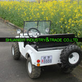 La Chine Newest Electric ATV avec 12V20A