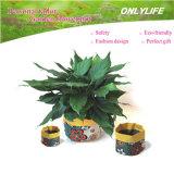POT di fiore riutilizzabile del giardino ecologico Oh-Gf-002