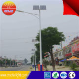 좋은 Design Reasonable Price 30W Solar Street Light Proposal