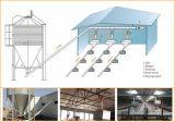 Het landbouw Economische Geprefabriceerd huis van de Apparatuur voor het Landbouwbedrijf van de Kip