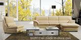 居間の本革のソファー(SBL-9118)