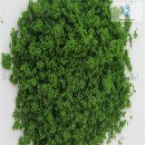 Feines Tree Powder für Landscaping Model Material