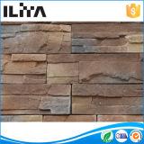 Выращиванная в питательной среде: каменная керамическая плитка стены для строительного материала