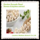 Pó natural do extrato de Eutyales do sémen da semente do Euryale de Gordon da alta qualidade
