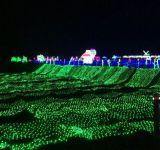 Luz da rede de pesca do diodo emissor de luz para a decoração da árvore de Chrismtas