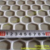 중국 공장 HDPE 잔디 보호 플라스틱 스크린 메시 (XM-032)