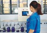 Válvula de control sanitaria de flujo del acero inoxidable