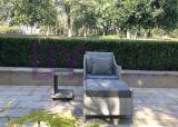 A melhor mobília simples de venda da sala de estar do Chaise da cadeira do Rattan da barra do estilo