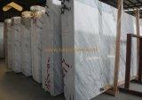 Lastra di marmo bianca falsa di Statuairo