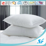 백색 Goose 또는 Duck Feather Euro Pillow