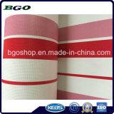 Tela incatramata laminata PVC popolare con il reticolo (250dx250d 22X19 480g)