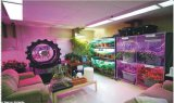 2016 cultures hydroponiques rotatoires DEL agricole verticale de modèle neuf élèvent la lumière
