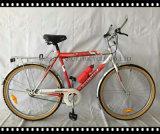 12 Inch Kids Bicycle, Children Bike für 3-8 Years Old