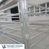 Le bétail élevé de zingage clôture utilisé pour des bétail/sauts de bétail avec bon marché (XY-003)