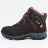 女性のための防水靴をハイキングする屋外スポーツを移住する慰め