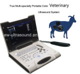 für Testing Pregnancy von Big Animals Laptop Ultrasound Scanner Color Doppler Ew-C8V mit Rectal Probe LV7.5/60