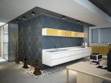 Instalaltion容易な現代PVC 3Dは壁の芸術米国にパネルをはめる