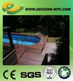 Panneau de plancher en plastique en bois amical creux du composé WPC d'Eco