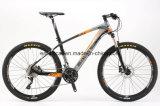 専門の競争のためのクロス・カントリー山の自転車