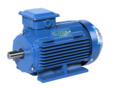 Электрические двигатели серии Ye3 трехфазные (H132-355mm, 5.5-315kW)