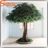 Nuovo Design di interni o decorazione del giardino artificiale Ficus Albero