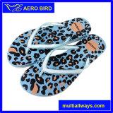 Leopardo-Imprimir los deslizadores de moda de los hombres del PE (GD1501)